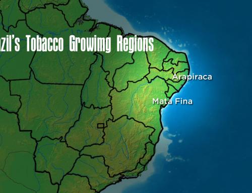 My New Discoveries: Brazilian Arapiraca Wrappers and Mata Fina Tobaccos