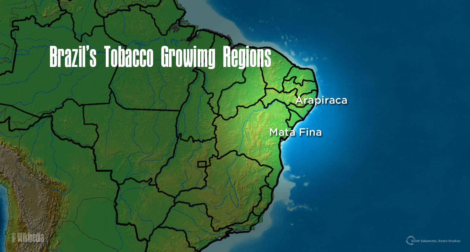 Brazilian Arapiraca Wrappers, Mata Fina, Tobacco Regions, Brazilian Tobacco Tobaccos